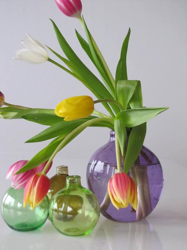 albin m.blommor